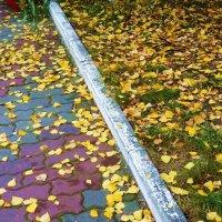 Листья желтые, скажите, что вам снится... :: татьяна