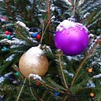 В ожидании Нового года... :: Galina Dzubina