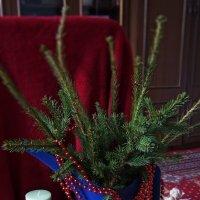 Рождественская елочка :: Анна Воробьева