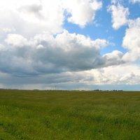 Жито. Небо. Беларусь :: ГраВИ ©