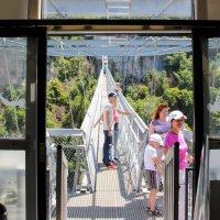 Вид на мост из второй тарзанки :: Вячеслав Случившийся