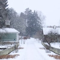 Снег идёт. :: Нина Бурченкова.