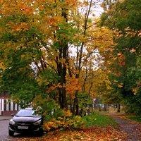 Осень в город пришла :: Сергей Карачин