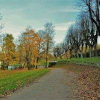 Аллея к Карпину пруду... :: Sergey Gordoff