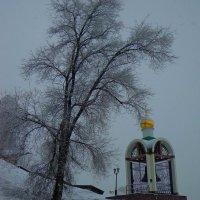 зимнее :: Наталья Сазонова
