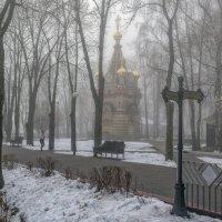 утро туманное :: Василий Королёв