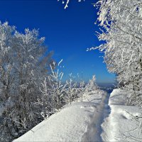 Зимнее :: Leonid Rutov