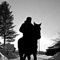 на коне :: Владимир Коваленко