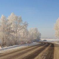 Зимняя дорожка... :: Елена Ярова