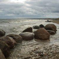 Балтика :: leo yagonen