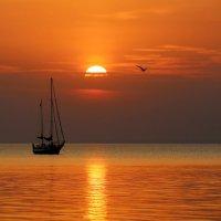 Одинокий кораблик :: Нилла Шарафан