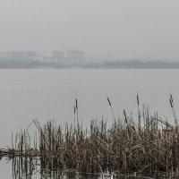 там , на том берегу :: Геннадий Свистов