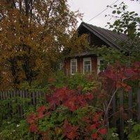 Домик в деревне :: Владимир Стаценко