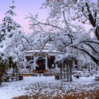 Первый снег :: Юрий Губков