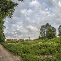 По дороге с облаками :: Андрей Михайлин