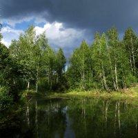 Приближение грозы. :: Oleg S