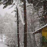 снегопад :: Вадим Бурмистров