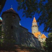 У стены замка Боузов :: M Marikfoto