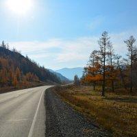 За Семинским перевалом. :: Валерий Медведев