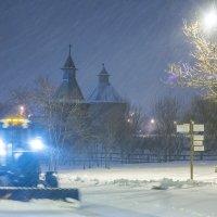 Москва. Коломенское. Снегопад. :: Игорь Герман