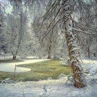 Зимнее озерцо :: Александр Бойко