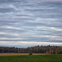 Простой весенний пейзаж :: Valeriy(Валерий) Сергиенко