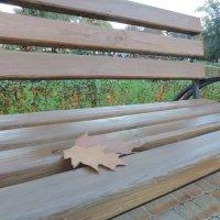 осень в парке :: Taina