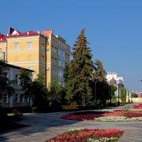 Цветы на улицах Тамбова :: MILAV V