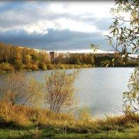 Осенний пруд. :: Александр Шимохин