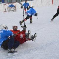 хоккеисты :: леонид логинов