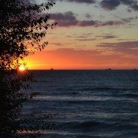 Над бездной с синими глазами-дымится розовый закат... :: Клавдия Андреева