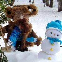 Кому помочь с расчисткой снега? :: Людмила (Руца)