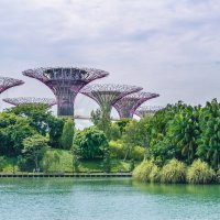 Сады у Залива (Gardens by the Bay), Сингапур. :: Edward J.Berelet