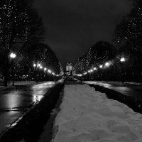 Вечер в парке :: Михаил Рогожин