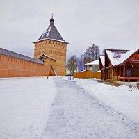 Суздаль. Спасо-Евфимиев монастырь. :: Николай Смольников