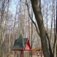 парк в день весеннего равноденствия :: Анна Воробьева