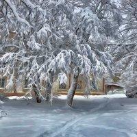зима... :: Ольга Cоломатина
