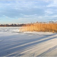 Первый снег. :: Валерия Комова