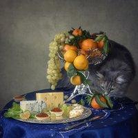Отвлекающий маневр с мандарином :: Ирина Приходько