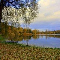 Осень печальная, грустная осень, листья роняет, пощады не просит. :: Юрий. Шмаков