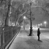 Одиночество. :: vlad alferow
