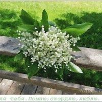 В память о тебе,мой родной... :: Лидия (naum.lidiya)