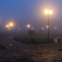 Рассвет.Туман. :: Владимир Гришин