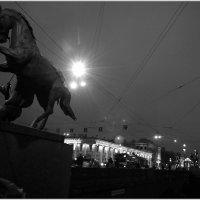 И чего только невидели эти кони... :: tipchik