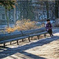 Позняя осень :: Сергей Порфирьев