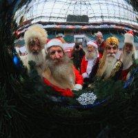 С Новым Годом! :: Николай Кондаков