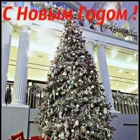 Праздничная Открытка. :: Марина Харченкова