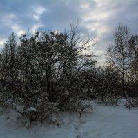 Зимний вечер :: Александр Шацких