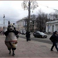 Медведь на Невском! :: Вера