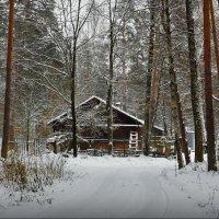 Домик в лесу! :: Владимир Шошин